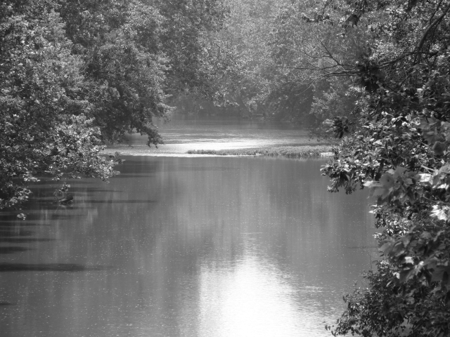 Black and White Photo of a River