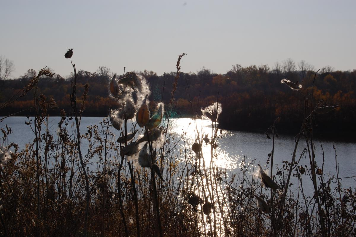 Five Rivers Metro Parks - Old Springfield Lakes